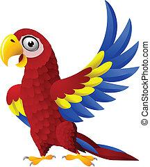 Detaillierter lustiger Macau-Vogel Cartoon