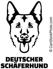 Deutscher Schäferkopf.