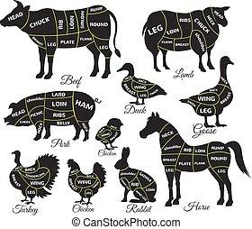 Diagrammführer zum Schneiden von Fleisch