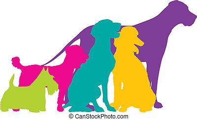 Die Farbe des Hundes