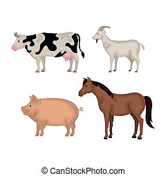 Die Ikone der Tiere.