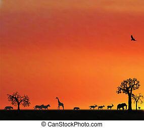 Die Illustraktion von Tieren im Sonnenuntergang in Afrika