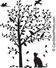 Die Katze starrt die Vögel auf den Baum.