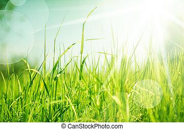 Die Natur mit Gras abtrennen