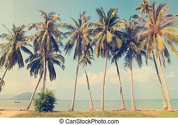 Die tropischen Palmen am Strand
