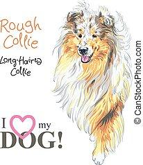 Dog grobe Collie Rasse Vektor.