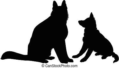 dogs., schafhirte, deutsch, rasse, hund, vektor