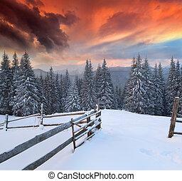 Dramatische Winterlandschaft in den Bergen. Ein bunter Sonnenaufgang
