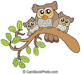 Drei süße Eulen auf Zweig