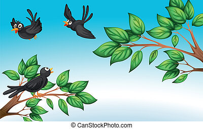 Drei Vögel im Wald