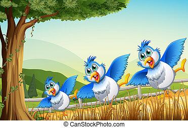 Drei Vögel unter dem Baum.