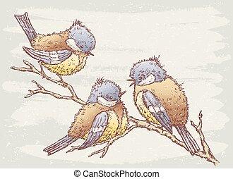 drei, vögel