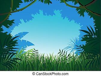 Dschungelhintergrund