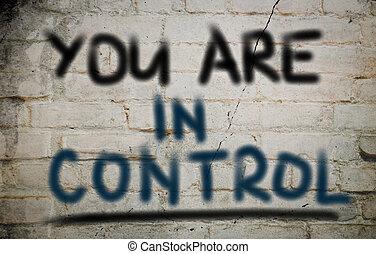 Du bist im Kontrollkonzept.