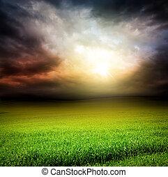 Dunkler Himmel, grünes Grasfeld mit Sonnenlicht
