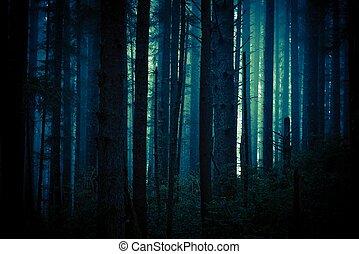 Dunkler, unheimlicher Wald