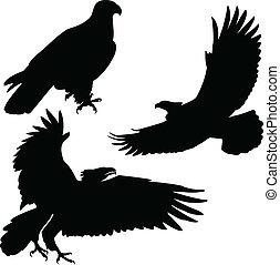 Eagle Vektorsilhouette