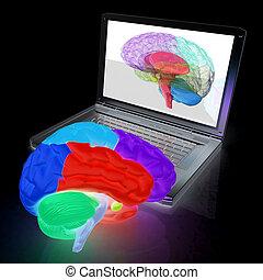 echte , dreidimensional, render, überfliegen, laptop., kreativ, gehirn, menschliche , digital, modell, 3d