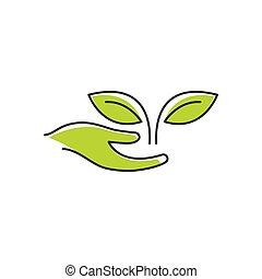 Eco Care Logo.