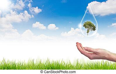 Eco-Konzept: Baum im Wasser fällt gegen Sonne und blauer Himmel
