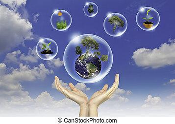 Eco-Konzept: Hand hält Erde, Baum und Blume in Blasen gegen die Sonne und den blauen Himmel