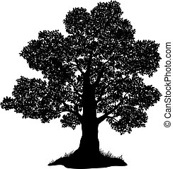 Eichenbaum und Gras, Silhouette