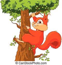 Eichhörnchen auf dem Baum.
