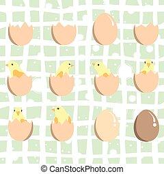 eier, hühner, satz