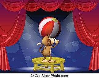 Ein Affe, der mit einem Ball spielt