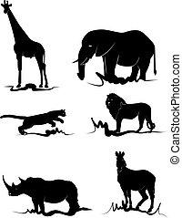 Ein afrikanisches Tier