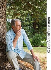 Ein aufmerksamer, reifer Mann, der auf Tre sitzt