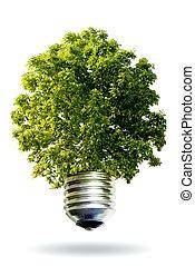 Ein erneuerbares Energiekonzept