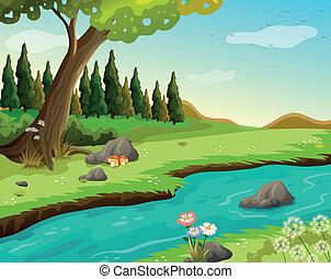 Ein Fluss im Wald.