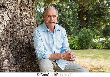 Ein fröhlicher reifer Mann, der auf dem Baum sitzt