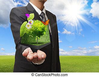 Ein Geschäftsmann, der eine kreative Baumkiste in der Hand hält, mit einer grünen Wiese im Hintergrund