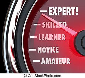 Ein Geschwindigkeitsmesser oder ein Messgerät, das Ihre Fortschritte beim Erlernen von Fähigkeiten verfolgt, von der Ebene des Amateurs oder Neulings zum Experten