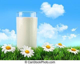Ein Glas Milch im Gras mit Gänseblümchen