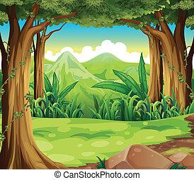 Ein grüner Wald über die Berge.