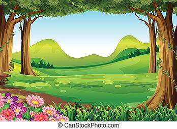 Ein grüner Wald.