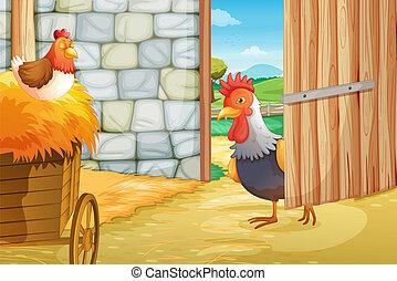 Ein Hahn und eine Henne im Scheunenhaus