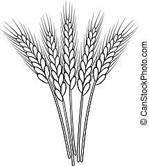 Ein Haufen Vektoren, schwarz-weiße Weizenohren