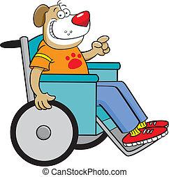 Ein Hund im Rollstuhl