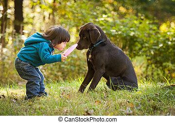 Ein junges Kind spielt mit Hunden
