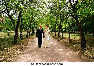Ein junges Paar, das an ihrem Hochzeitstag im Park spazieren geht