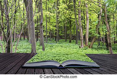 Ein kreatives Konzept von Buch Wunderschönes, lebendiges grünes Wachstum in der Waldlandschaft im Frühling