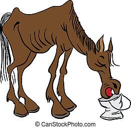 Ein mageres Pferd