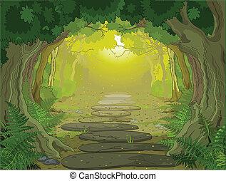 Ein magischer Landschaftseingang.