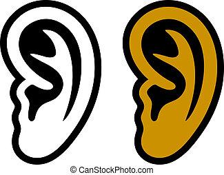 Ein menschliches Gehör