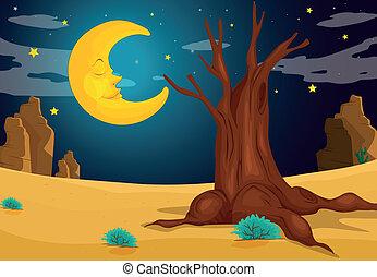 Ein Mondlicht-Abend