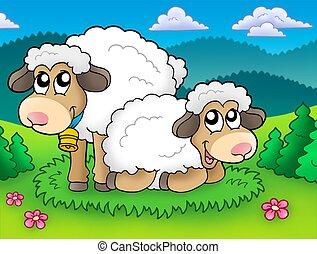 Ein paar süße Schafe auf der Wiese